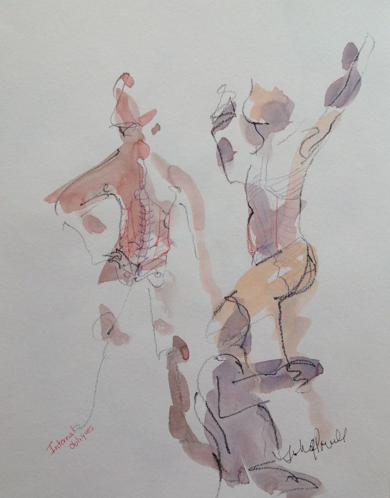 watercolor anatomy by Lesley A. Powell